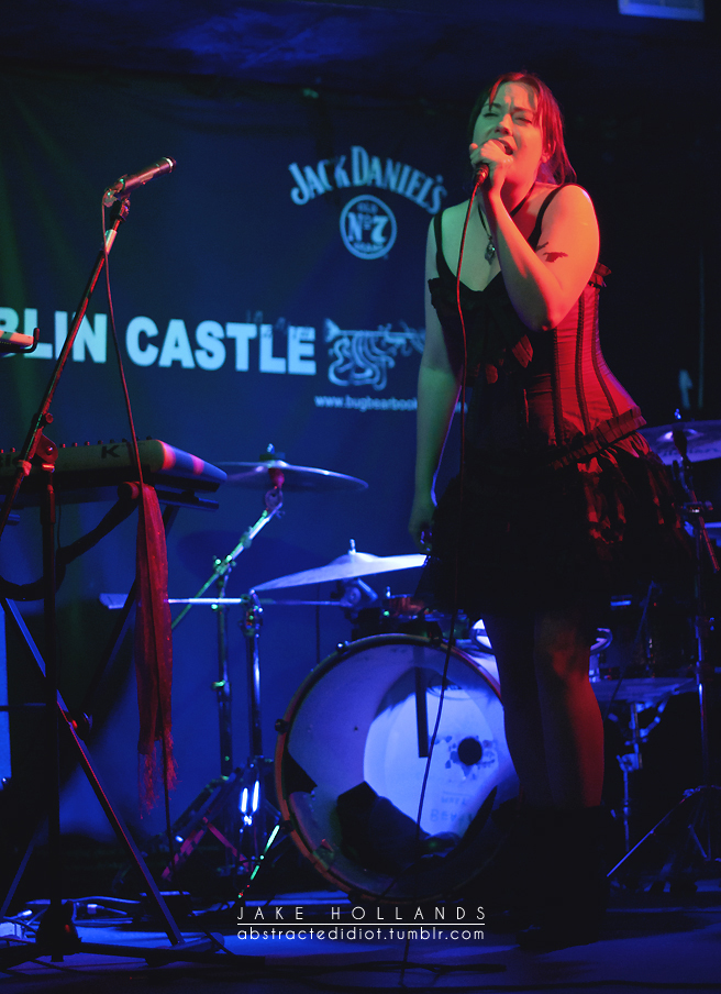Dublin Castle, Camden, January 2012 - Photo by Jake Hollands